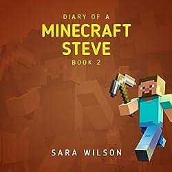 Diary of a Minecraft Steve 2