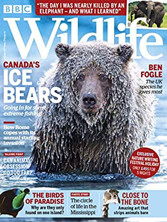 Amazon com: BBC Wildlife Magazine: Kindle Store