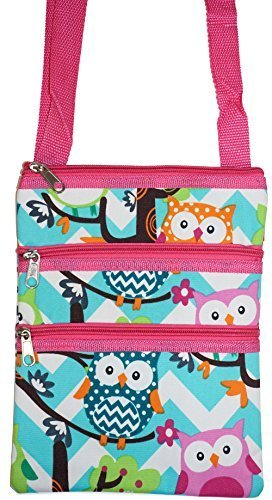 Pink Aqua Blue Zig Zag Chevron Owls Small Hipster Cross-Body Bag