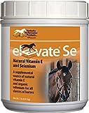 ELEVATE SE VIT E & SELENIUM POWDER FOR HORSES - 2 POUND