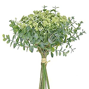 Anna Homey Decor Artificial Baby Breath Flower in Bulk Fake Gypsophila Flowers Bouquets with Silver Dollar Eucalyptus for Vase Decoration DIY Floral Arrangement Wedding Party Home Tabel Decor -Green