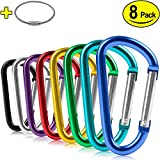 ZEINZE Aluminum D-Ring Spring Loaded Gate Small Keychain Carabineers Clip Set for Outdoor/Camping/Mini Lock Hooks, Snap Link Key Chain