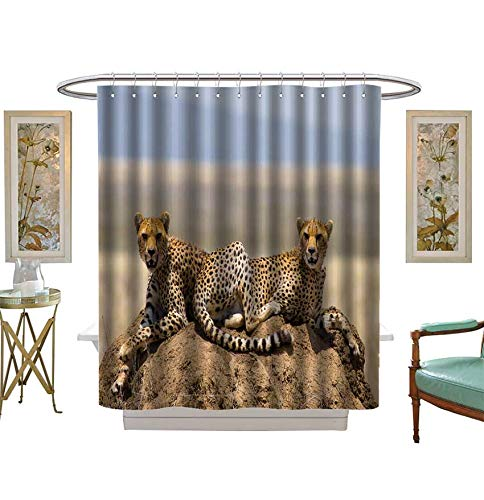 Shower Curtains 3D Digital Printing Two Cheetahs on The Hill in The Savannah Kenya Tanzania Africa National Park Serengeti Bathroom Set with Hooks Size:W72 x L72 inch