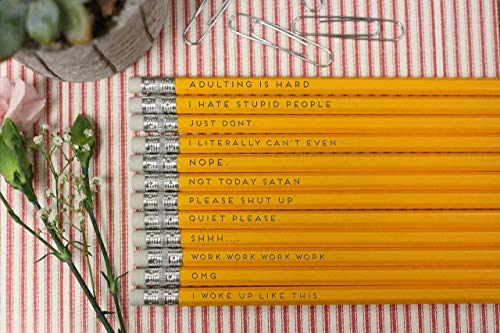 Funny Adult Sassy Sayings Pencil's For Students Gifts]()