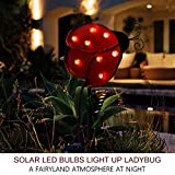 "Bright Zeal 10"" Big Metal Ladybug Solar Lights Yard Art - Outdoor Garden Decorations LED Solar Garden Statue - Yard Decorations Solar Lights - Solar Ladybug Lights Figurine Lights Solar Garden Decor"