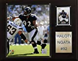 NFL Haloti Ngata Baltimore Ravens Player Plaque