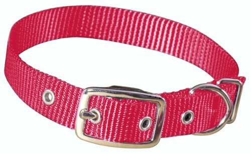 Hamilton 5/8-Inch by 16-Inch Single Thick Nylon Deluxe Dog Collar, Raspberry, My Pet Supplies