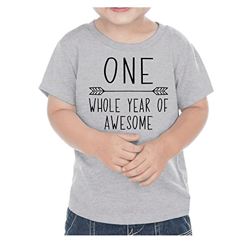 Bump And Beyond Designs First Birthday Boy T Shirt One Year Old Outfit 12 Months Heather Gray