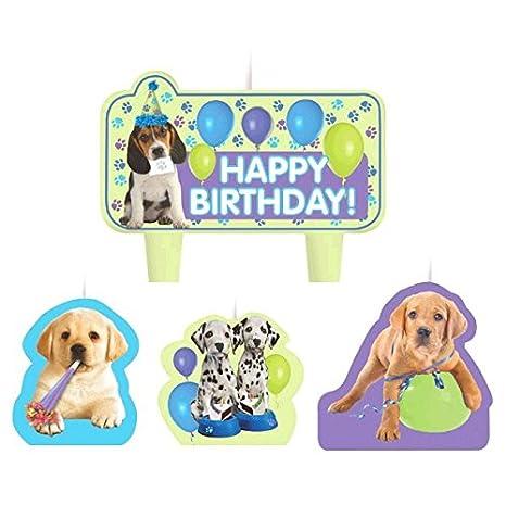 Amazon.com: Party Time Party Pups moldeado – Juego de mini ...