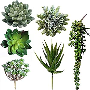 Winlyn 6 Pcs Unpotted Fake Succulents Assorted Faux Succulent in Different Green Artificial Hanging Succulents Textured Faux Succulent Pick Hanging String of Pearls Plant for Wedding Centerpieces 79
