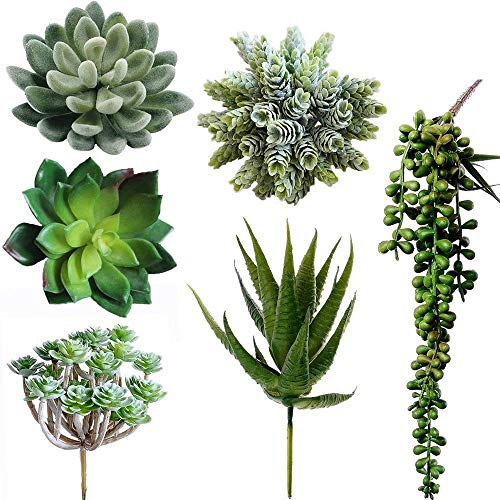 Winlyn 6 Pcs Unpotted Fake Succulents Assorted Faux Succulent in Different Green Artificial Hanging Succulents Textured Faux Succulent Pick Hanging String of Pearls Plant for Wedding Centerpieces (Faux Succulent)