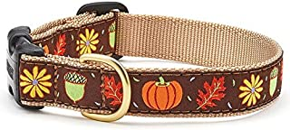 product image for Up Country Dog Collar - Harvest Time