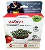 These single serve mini microgreens kits are a fun and inexpensive way to start growing microgreens for sandwiches, salads and garnishes. Choose from Radish, Arugula, Sunflower, Red Streaks Mizuna Mustard, Pea Shoots and Salad Mix. Makes a gr...