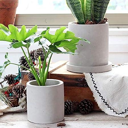 Amazon.com: Maceta redonda y cuadrada de cemento para cactus ...