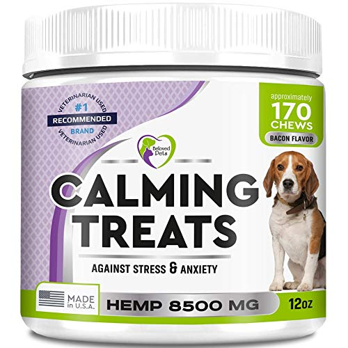Calming treats for dogs by Beloved pets