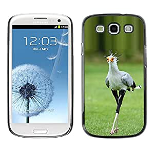 Plastic Shell Protective Case Cover || Samsung Galaxy S3 I9300 || Spring Roadrunner Nature @XPTECH