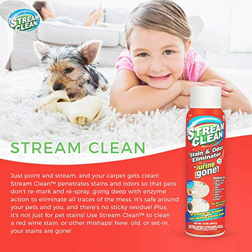 Stream Clean Carpet Stain and Odor Eliminator: Professional Strength, Deep Cleaning Enzyme Action, Destroys Through Oxidation Catalysis, No Scrubbing Needed, 18 Ounce