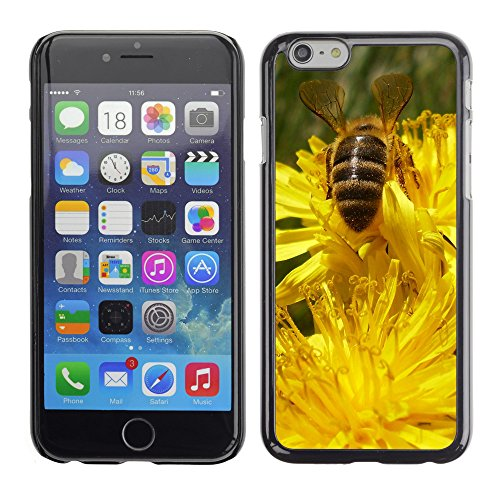 "Premio Sottile Slim Cassa Custodia Case Cover Shell // V00002930 abeille // Apple iPhone 6 6S 6G PLUS 5.5"""