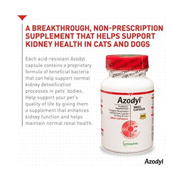 Vetoquinol Azodyl Kidney Health Supplement for Dogs & Cats, 90ct - Probiotic Pet Well-being - Help Support Kidney Function & Manage Renal Toxins - Renal Care Supplement - Easy-to-Swallow Small Caps 2
