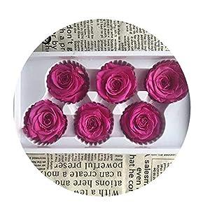 Sevem-D Preserved Flowers Flower Immortal Rose 5Cm Diameter Eternal Life Flower Material Gift,18,About 5-6Cm in Diame 95
