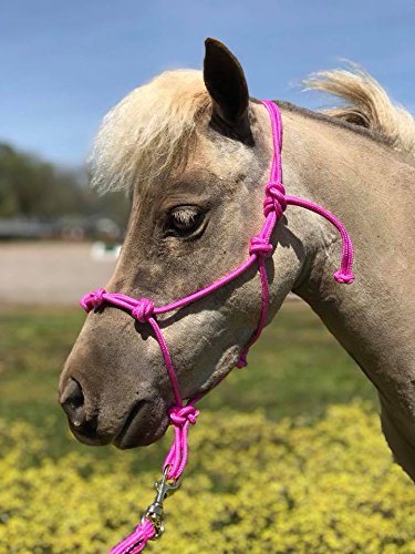 Star Miniature Horse 4 Knotted Training Rope Halter (Pink, Large 38-42 (Knotted Training Halter)