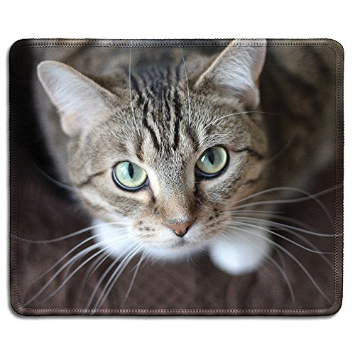 dealzEpic - Animal Art Mousepad - Natural Rubber Mouse Pad Printed with A Cute Cat Looking Up - Stitched Edges - 9.5x7.9 inches ()