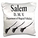 Jack of Arts Humor/Expressions - Text with Salem DMV - 16x16 inch Pillow Case (pc_44581_1)