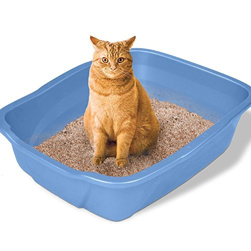 (Noa Store Large Cat Litter Box Big Huge Kitty Pan Pet Toilet Clean Mat)