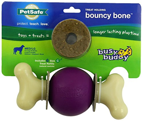 PetSafe Busy Buddy Bouncy Bone Dog Toy, Medium/Large
