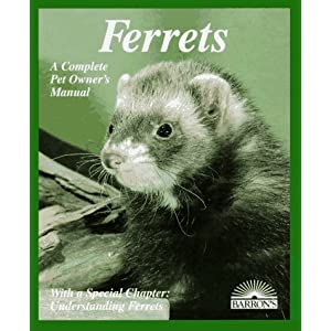 Ferrets: Everything About Purchase, Care, Nutrition, Diseases, Behavior, and Breeding (Barron's Complete Pet Owner's Manuals) 6