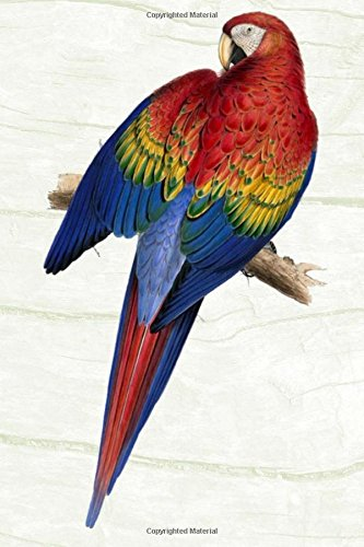 Parrot Keeping: Varieties, Breeding, Caring, Accommodation & More
