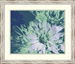 Framed Art Print, Teal Bloom II' by A. Project: Outer Size 28 x 24 (B00ZECEVX6) | Amazon price tracker / tracking, Amazon price history charts, Amazon price watches, Amazon price drop alerts