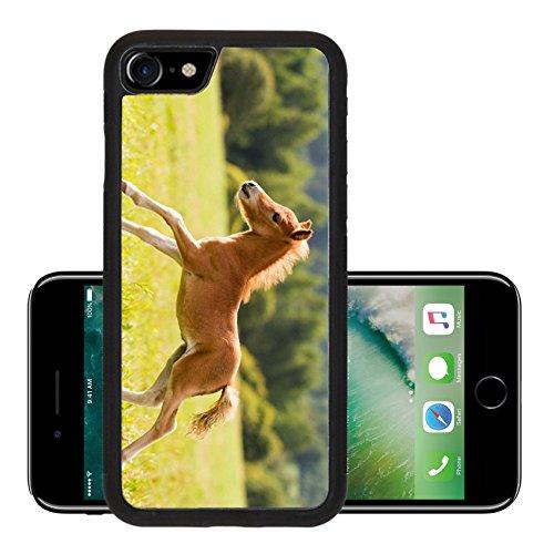liili-premium-apple-iphone-7-aluminum-backplate-bumper-snap-case-iphone7-foal-mini-horse-falabella-i