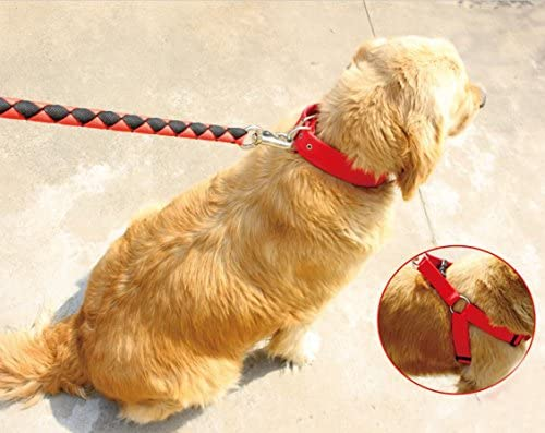 Diyafas Nylon Harnais de Collier de Laisse Chien Tissé 3 Set Corde de Traction de Animaux Domestiques Parfait pour Petits Moyens et Grands Chiens
