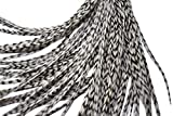 Hair Feathers Kit, 20 Long Feather Extensions with