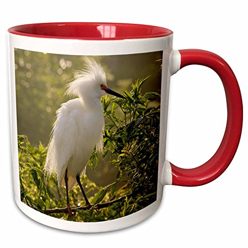 3dRose mug_89222_5