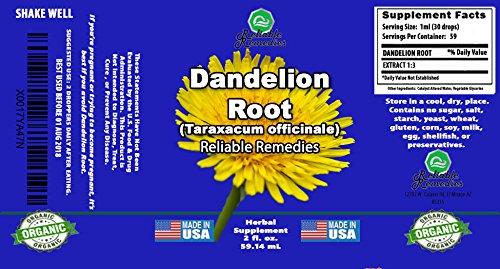 Amazon.com: 2 onza. – Diente de león raíz (Taraxacum ...