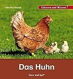 Das Huhn: Schauen und Wissen!
