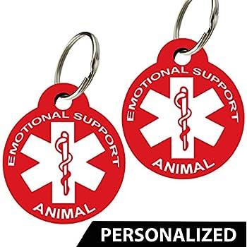 Amazon.com: Etiquetas personalizadas para perro con símbolo ...