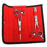 "BDEALS 6.5"" Professional Hair Cutting Razor Edge Barber & Thinning Scissors 2 pc Set"
