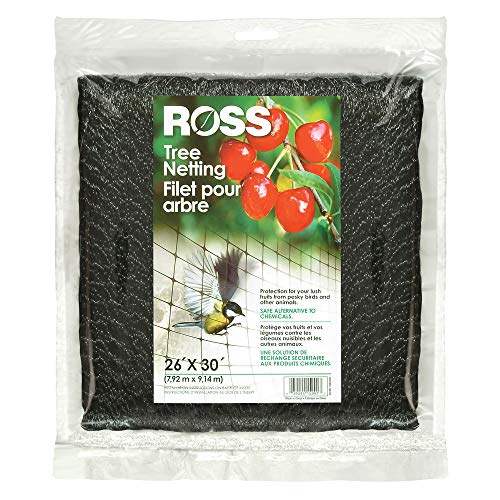 (Ross 15991 UV Tree Netting Protects Fruits from Birds and Animals, 26 feet x 30 feet, Black )