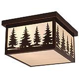 Vaxcel OF33412BBZ Yosemite 12-Inch Outdoor Ceiling Light, Burnished Bronze