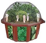Dunecraft Culinary Herb Garden