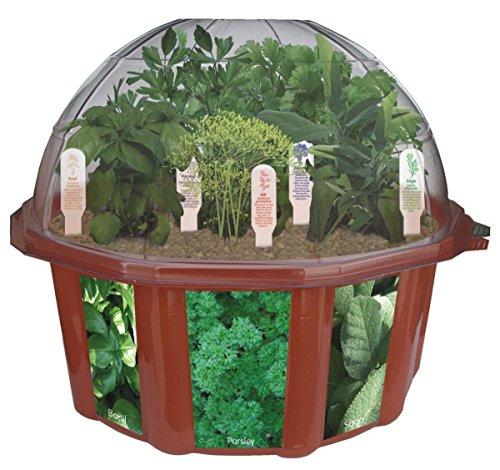 Dunecraft Culinary Herb Garden by DuneCraft