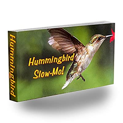 Fliptomania Hummingbird Flipbook: Fliptomania: Toys & Games