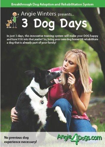 3 Dog Days, Revolutionary Dog Training and Rehabilitation -