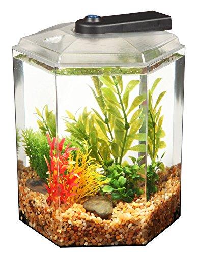Api betta kit hex fish tank 1 7 gallon reviews for Fish tank deals