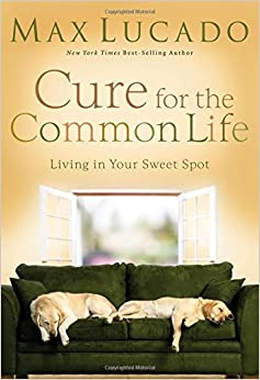 Image result for cure for the common life max lucado