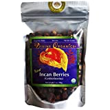 Divine Organics Raw Golden Berries / Incan Berries - 7 oz Golden Berry
