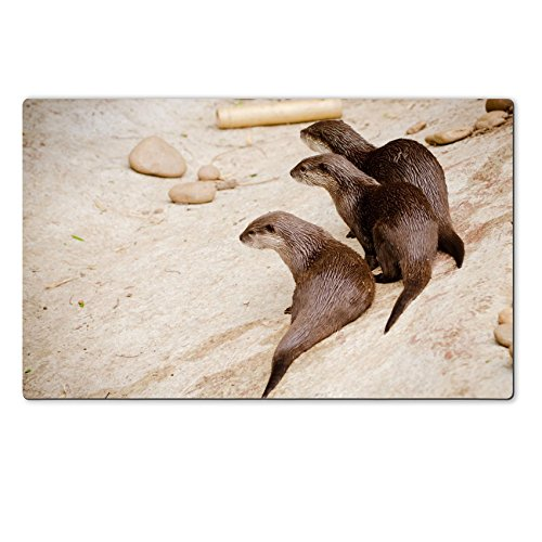 liili-premium-large-table-mat-284-x-177-x-02-inches-asian-small-claw-otters-photo-19508417
